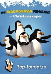 Пингвины из Мадагаскара / The Madagascar Penguins in: A Christmas Caper