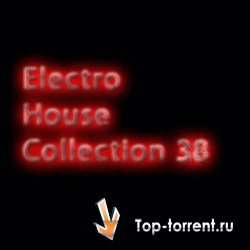 VA - Electrohouse collection 38