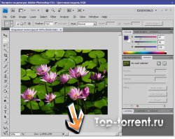 Экспресс видеокурс Adobe Photoshop CS4 (Интерактивный)