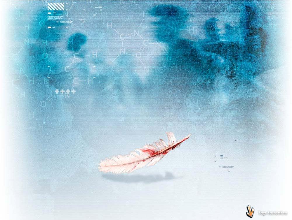 Assassin's Creed 1-2 » Торрент-Трекер Топ-Торрент