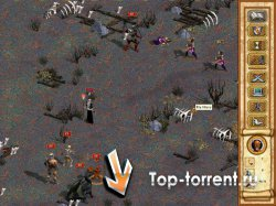 ��������� Heroes of Might & Magic (1995-2009)
