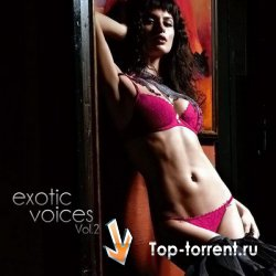 VA - Exotic Voices Vol.2