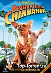 ������ �� �������-����� 2 / Beverly Hills Chihuahua 2