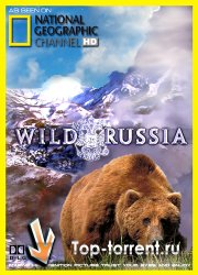 National Geographic: Дикая природа России. Сибирь / National Geographic: Wild Russia. Siberia