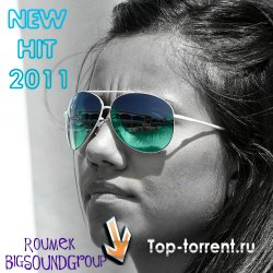 VA - New Hit 2011