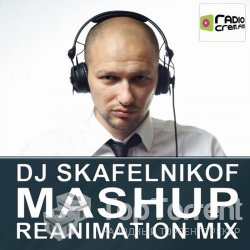 DJ Skafelnikof - Mashup Reanimation Mix (Vol.2) (2012)
