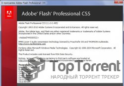 Flash CS5 Portable