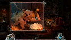 Fierce Tales: The Dog's Heart Collector's Edition / Жестокие истории: Собачье сердце