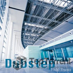 Dubstep: 100 Tracks (2012)