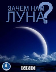 Зачем нам Луна? / Do We Really Need the Moon? (2011)