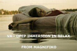 VA - Deep Immersion In Relax (2013)