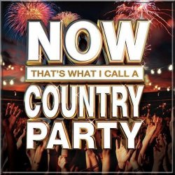 VA - Now That's What I Call A Country Party 2013 (2013)
