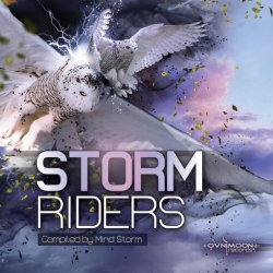 VA - Storm Riders - Compiled by Mind Storm (2012)