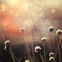 VA - Best Chillstep Collection [May] (2013)