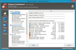 CCleaner Business / Professional Edition