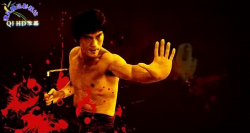 Легенда о Брюсе Ли / The Legend of Bruce Lee (2008)