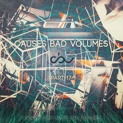 VA - Causes Bad Volumes [Dubstep Addiction] Part 17 (2013)