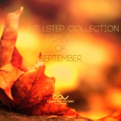 VA - Best Chillstep Collection [September 2013]