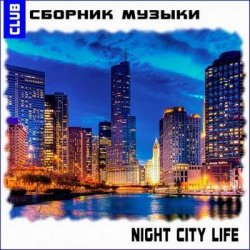 VA - Night City Life (2013)