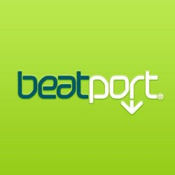 VA - Beatport Top 100 November (2013)