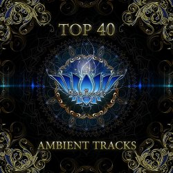 VA - Top 40 Ambient Tracks (2013)
