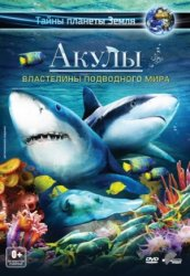 Акулы 3D: Властители океана / Sharks 3D: Kings of the Ocean (2013)