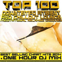 VA - Top 100 Downtempo Ambient and Chillout Lounge Meditational Relaxing Grooves (2015)