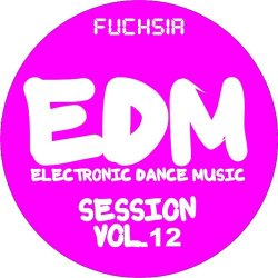VA - EDM Electronic Dance Music Session, Vol. 12 (Fuchsia) (2015)