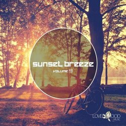 VA - Sunset Breeze Vol 9 (2015)