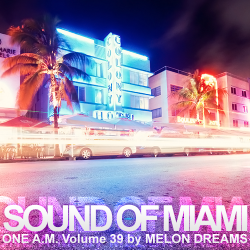 VA - Sound Of Miami: One A.M. Volume 39 (2015)
