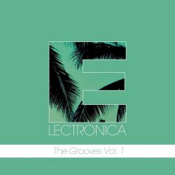 VA - Electronica The Grooves Vol 1 (2015)