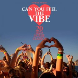 VA - Can You Feel the Vibe (20 Ibiza House Classics) (2015)